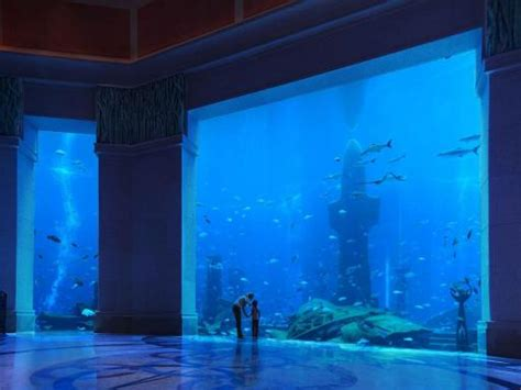 The Lost Chambers at Atlantis The Palm | ATD