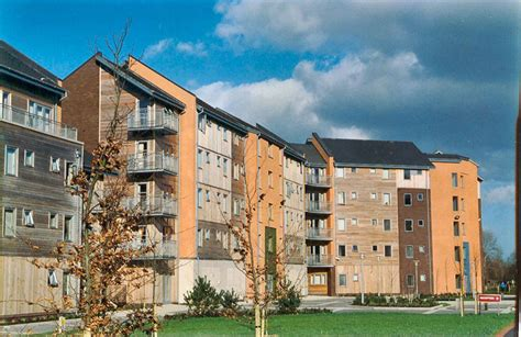 Thomond Village, University of Limerick | Punch consulting