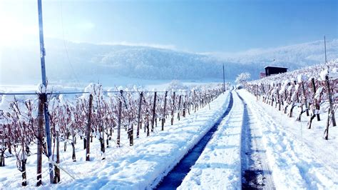 Winter Land Wallpapers   HD Wallpapers   ID #13937